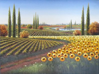Sunflowers and Vineyards